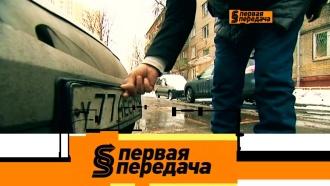 Кража номеров, условно бесплатная парковка, скандал сЕмельяненко изащита от камней