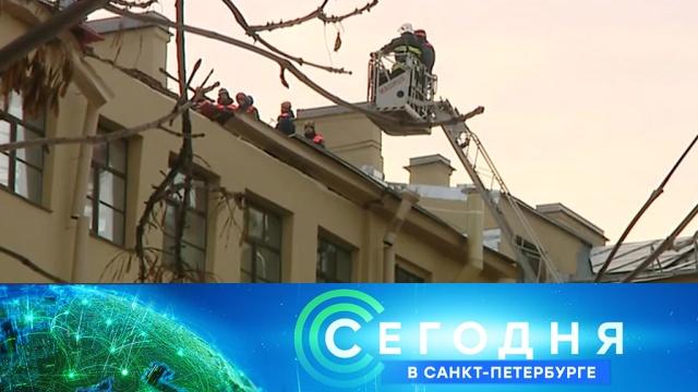 11 марта 2019 года. 16:15.11 марта 2019 года. 16:15.НТВ.Ru: новости, видео, программы телеканала НТВ