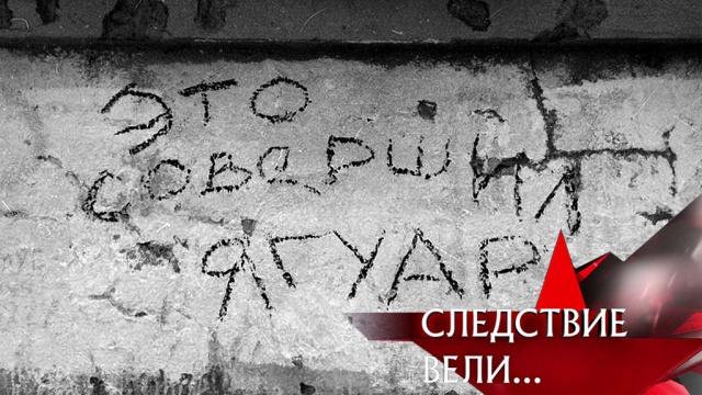 Кем оказался убийца по прозвищу Ягуар из тихого Кольчугина икак он попался? «Следствие вели…»— ввоскресенье в16:20.НТВ.Ru: новости, видео, программы телеканала НТВ