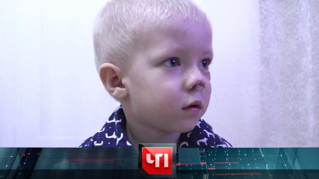 14марта 2019года.14марта 2019года.НТВ.Ru: новости, видео, программы телеканала НТВ