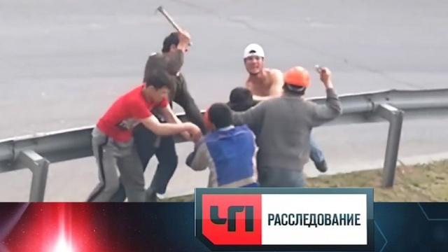 Почему среди мигрантов происходят массовые драки икого готовят взакрытых бойцовских клубах? «ЧП. Расследование»— впятницу на НТВ.НТВ.Ru: новости, видео, программы телеканала НТВ