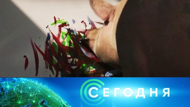 15марта 2019года. 06:00.15марта 2019года. 06:00.НТВ.Ru: новости, видео, программы телеканала НТВ