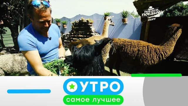 21 марта 2019 года.21 марта 2019 года.НТВ.Ru: новости, видео, программы телеканала НТВ