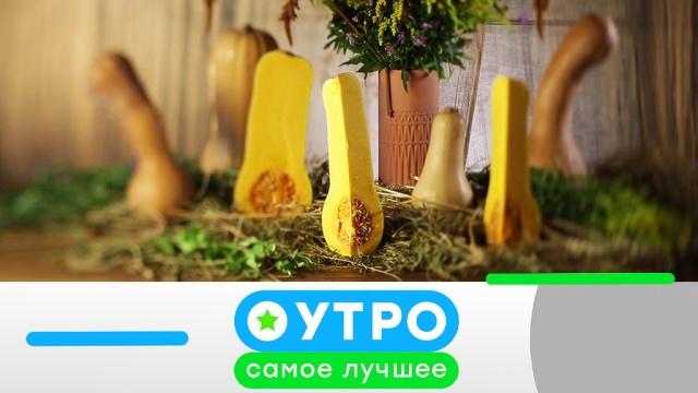 22 марта 2019 года.22 марта 2019 года.НТВ.Ru: новости, видео, программы телеканала НТВ