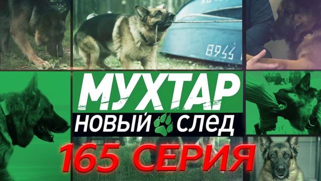 165-я серия.165-я серия.НТВ.Ru: новости, видео, программы телеканала НТВ