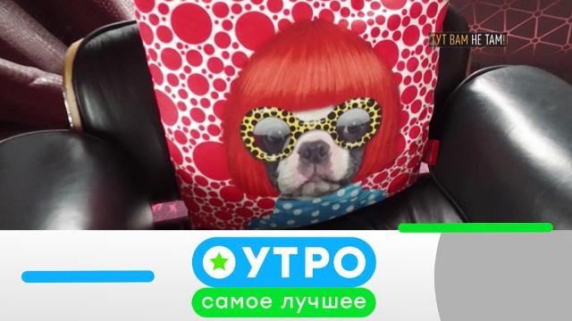 25марта 2019года.25марта 2019года.НТВ.Ru: новости, видео, программы телеканала НТВ