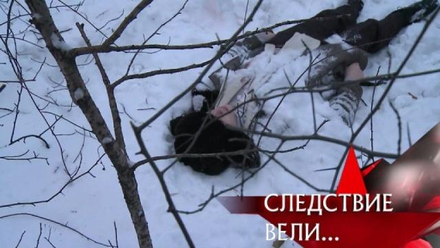 «Круговая порука».«Круговая порука».НТВ.Ru: новости, видео, программы телеканала НТВ