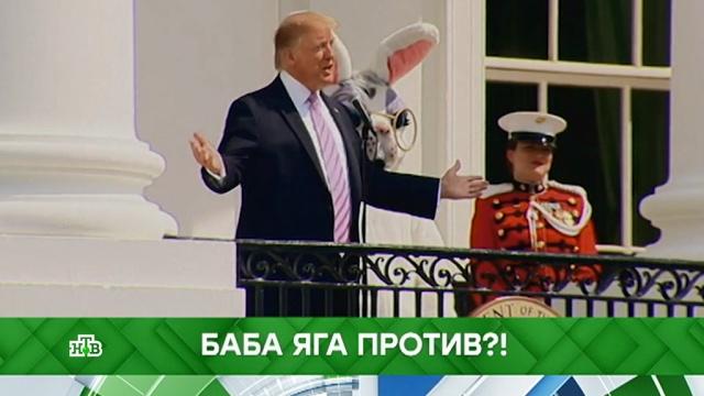 Выпуск от 24апреля 2019года.Баба-яга против?!НТВ.Ru: новости, видео, программы телеканала НТВ