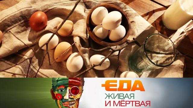 Выпуск от 27апреля 2019года.Выбор яиц, причины гастрита, польза сока черной редьки ибезвредная выпечка.НТВ.Ru: новости, видео, программы телеканала НТВ