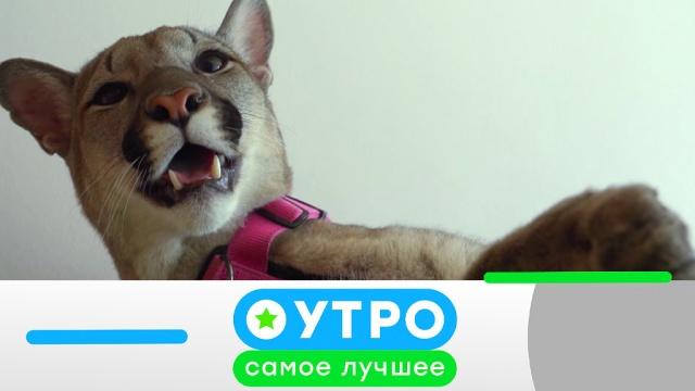6мая 2019 года.6мая 2019 года.НТВ.Ru: новости, видео, программы телеканала НТВ