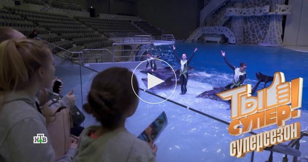 Школа «Москвариума» провела урок для участников шоу «Ты супер!»