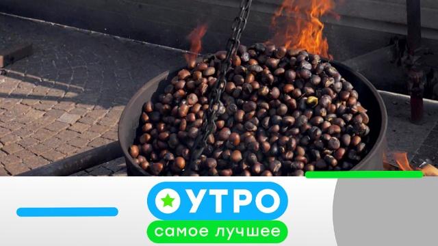 7 мая 2019 года.7 мая 2019 года.НТВ.Ru: новости, видео, программы телеканала НТВ