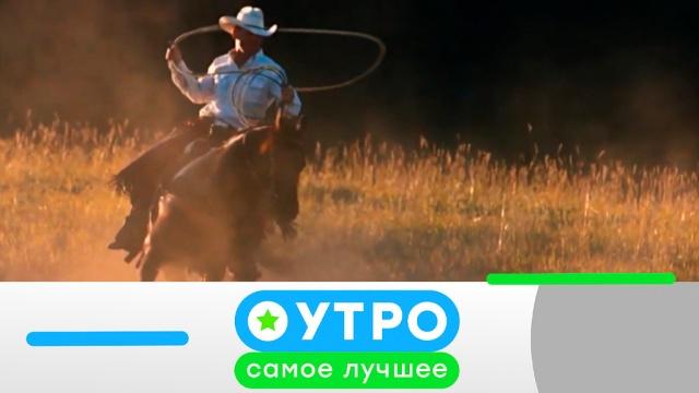 14 мая 2019 года.14 мая 2019 года.НТВ.Ru: новости, видео, программы телеканала НТВ