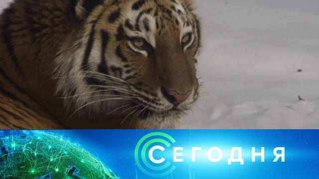 14мая 2019года. 13:00.14мая 2019года. 13:00.НТВ.Ru: новости, видео, программы телеканала НТВ