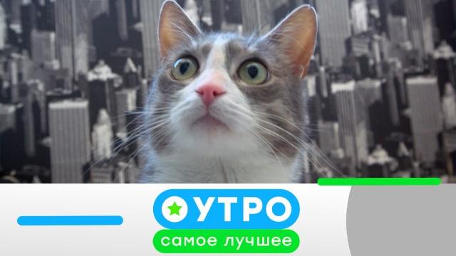 16 мая 2019 года.16 мая 2019 года.НТВ.Ru: новости, видео, программы телеканала НТВ