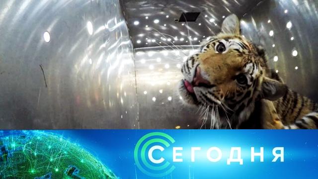 16 мая 2019 года. 19:00.16 мая 2019 года. 19:00.НТВ.Ru: новости, видео, программы телеканала НТВ