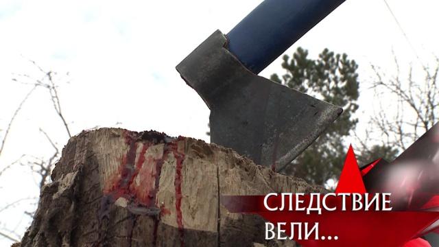 Выпуск от 19мая 2019года.«Дом, где стекает кровь».НТВ.Ru: новости, видео, программы телеканала НТВ