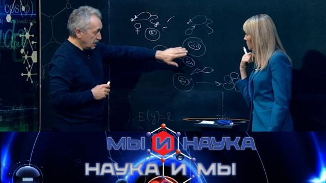 Выпуск от 24мая 2019года.Через 10лет ученые клонируют человека.НТВ.Ru: новости, видео, программы телеканала НТВ