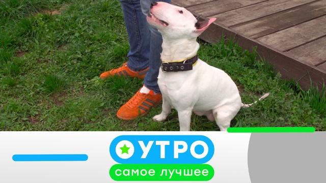 27 мая 2019 года.27 мая 2019 года.НТВ.Ru: новости, видео, программы телеканала НТВ