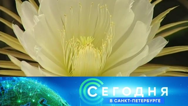 28 мая 2019 года. 19:20.28 мая 2019 года. 19:20.НТВ.Ru: новости, видео, программы телеканала НТВ