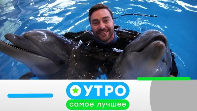 29 мая 2019 года.29 мая 2019 года.НТВ.Ru: новости, видео, программы телеканала НТВ