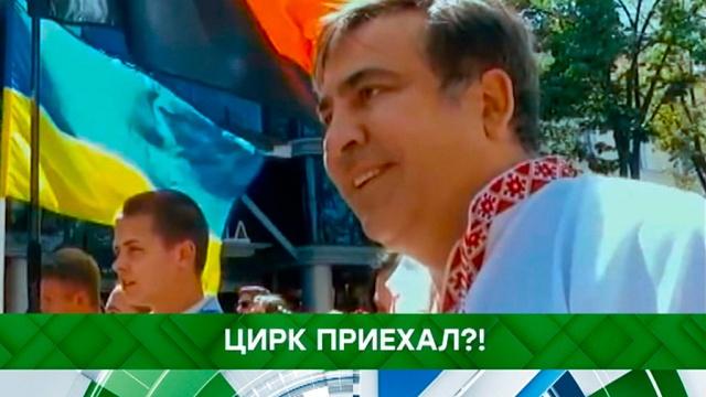 Выпуск от 29 мая 2019 года.Цирк приехал?!НТВ.Ru: новости, видео, программы телеканала НТВ