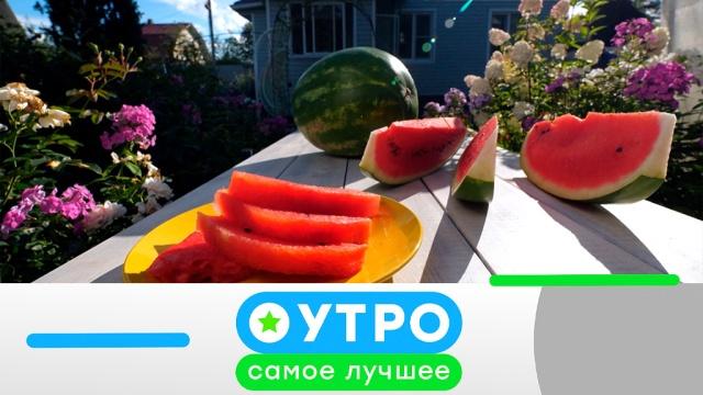 30мая 2019года.30мая 2019года.НТВ.Ru: новости, видео, программы телеканала НТВ