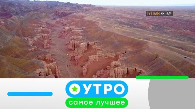 8 июля 2019 года.8 июля 2019 года.НТВ.Ru: новости, видео, программы телеканала НТВ