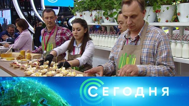 7июня 2019года. 08:00.Санкт-Петербург, интервью, Путин, НТВ, футбол, Китай, волонтеры, еда, ПМЭФ, нацпроекты.НТВ.Ru: новости, видео, программы телеканала НТВ