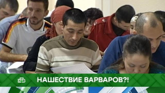 Выпуск от 7июня 2019года.Нашествие варваров?!НТВ.Ru: новости, видео, программы телеканала НТВ