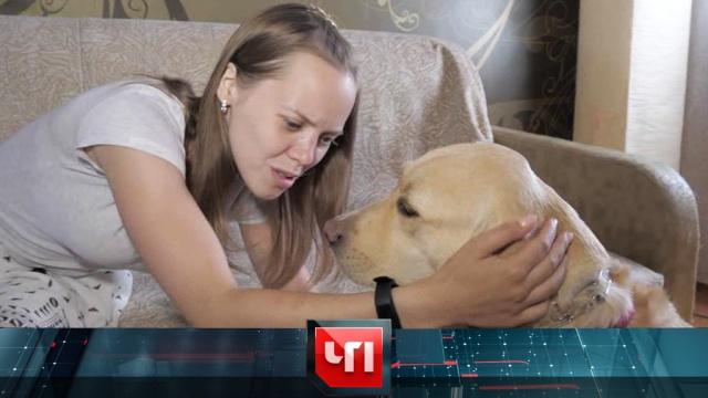 13июня 2019года.13июня 2019года.НТВ.Ru: новости, видео, программы телеканала НТВ