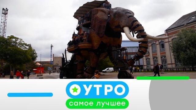 21 июня 2019 года.21 июня 2019 года.НТВ.Ru: новости, видео, программы телеканала НТВ