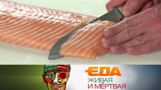 Выпуск от 22июня 2019года.Все окрасной рыбе, выбор авокадо иблюда высокой кухни из отходов.НТВ.Ru: новости, видео, программы телеканала НТВ