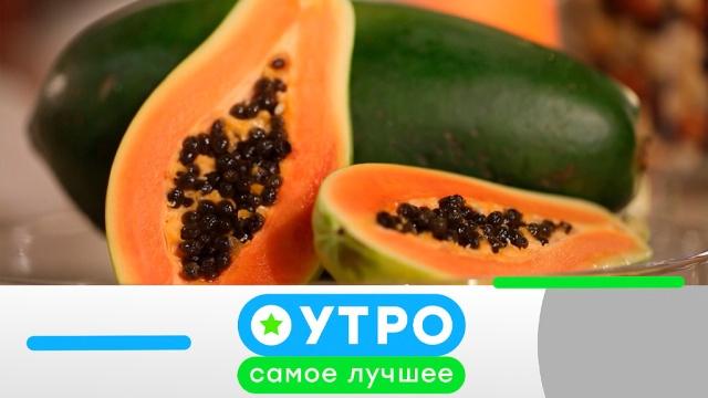 25 июня 2019 года.25 июня 2019 года.НТВ.Ru: новости, видео, программы телеканала НТВ