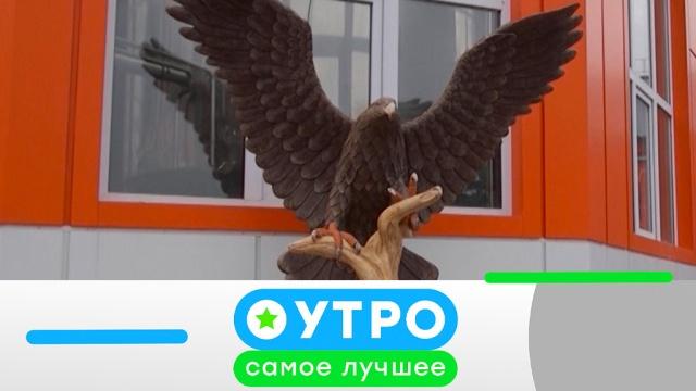 26 июня 2019 года.26 июня 2019 года.НТВ.Ru: новости, видео, программы телеканала НТВ