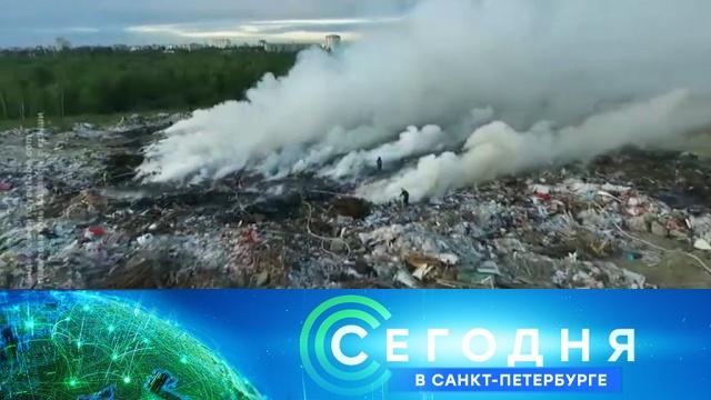 27 июня 2019 года. 16:15.27 июня 2019 года. 16:15.НТВ.Ru: новости, видео, программы телеканала НТВ