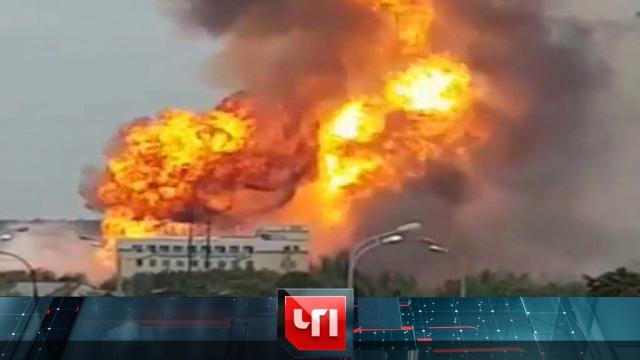 11 июля 2019 года.11 июля 2019 года.НТВ.Ru: новости, видео, программы телеканала НТВ