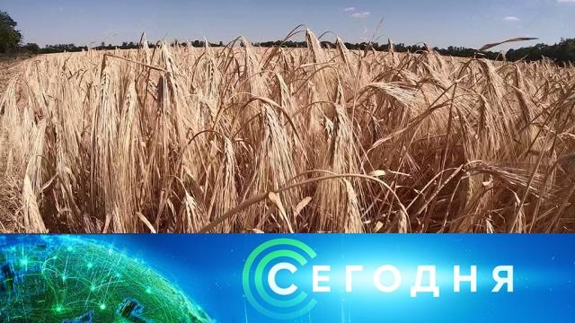 15 июля 2019 года. 13:00.15 июля 2019 года. 13:00.НТВ.Ru: новости, видео, программы телеканала НТВ