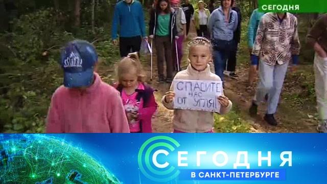 18 июля 2019 года. 16:15.18 июля 2019 года. 16:15.НТВ.Ru: новости, видео, программы телеканала НТВ