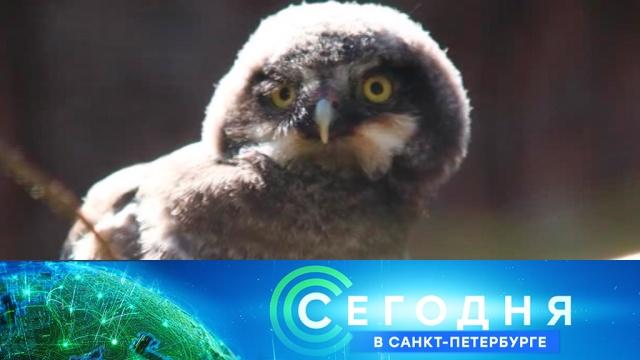 19 июля 2019 года. 19:20.19 июля 2019 года. 19:20.НТВ.Ru: новости, видео, программы телеканала НТВ