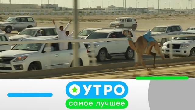 24 июля 2019 года.24 июля 2019 года.НТВ.Ru: новости, видео, программы телеканала НТВ