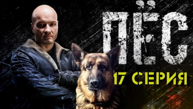 17-я серия.17-я серия.НТВ.Ru: новости, видео, программы телеканала НТВ