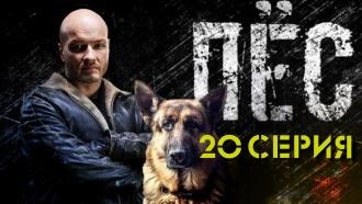20-я серия.20-я серия.НТВ.Ru: новости, видео, программы телеканала НТВ