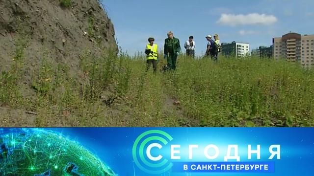29 июля 2019 года. 19:20.29 июля 2019 года. 19:20.НТВ.Ru: новости, видео, программы телеканала НТВ