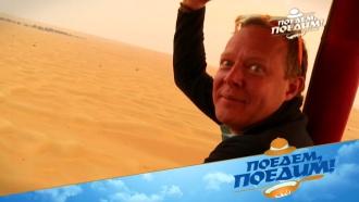 Квартал Джумейра, пляжи ичерепашьи гонки: как провести время вДубае