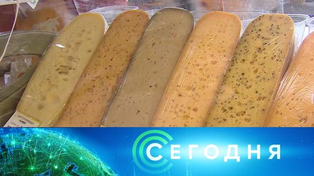 9 августа 2019 года. 16:00.9 августа 2019 года. 16:00.НТВ.Ru: новости, видео, программы телеканала НТВ