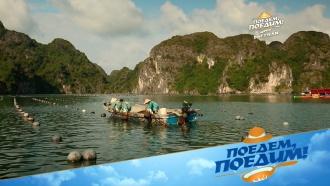Морская ферма: как выращивают жемчуг во Вьетнаме