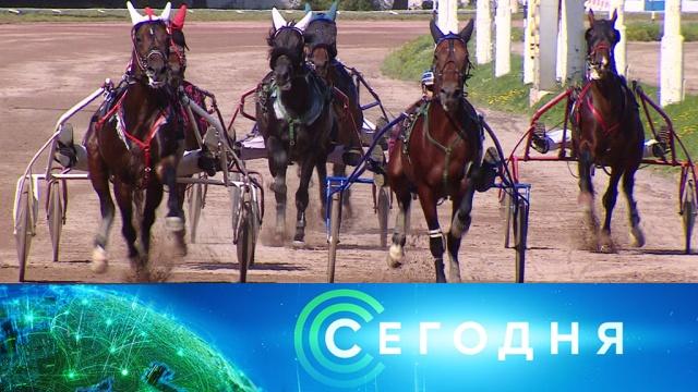 13 августа 2019 года. 10:00.13 августа 2019 года. 10:00.НТВ.Ru: новости, видео, программы телеканала НТВ