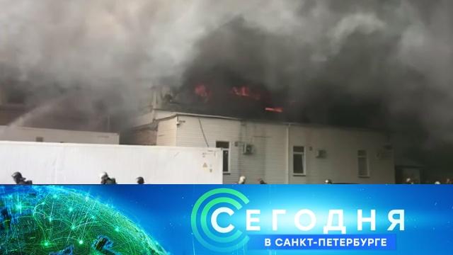 15 августа 2019 года. 16:15.15 августа 2019 года. 16:15.НТВ.Ru: новости, видео, программы телеканала НТВ