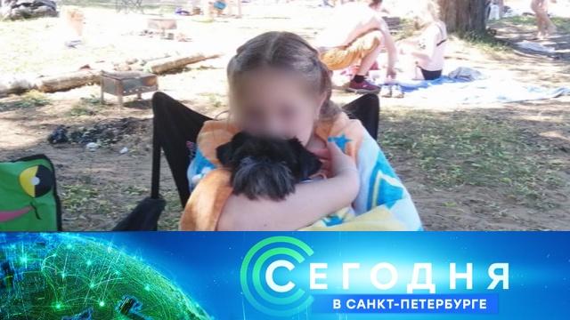21 августа 2019 года. 19:20.21 августа 2019 года. 19:20.НТВ.Ru: новости, видео, программы телеканала НТВ